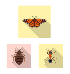 Design of insect and fly sign collection vector