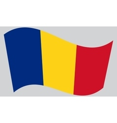 Flag of Romania waving vector image
