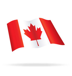 Flying flag canada vector