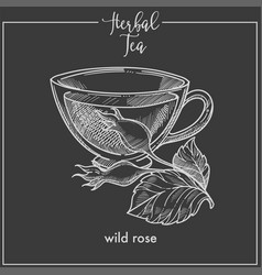 Healthy herbal tea with wild rose monochrome vector