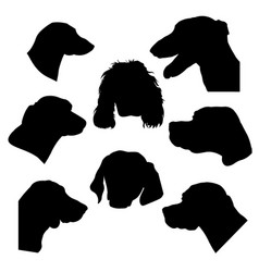 hunting dogs heads vector image