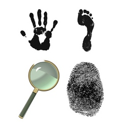 investigative set vector image vector image
