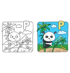 Little panda coloring book Alphabet P vector