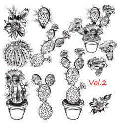 set hand drawn cactuses for design vector image