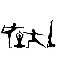 Silhouettes of a of a girl practicing yoga vector