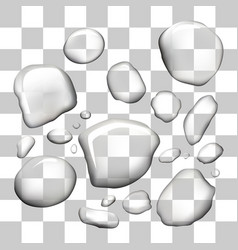 water drops on isolated transparent vector image