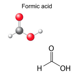 Chemical formula and model of formic acid vector image vector image