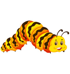 a caterpillar on white background vector image