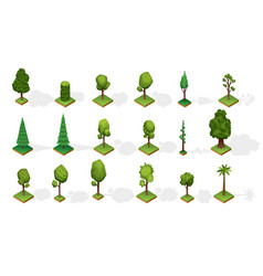 Collection isometric trees with shadow various vector
