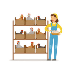 farmer woman caring for chickens poultry breeding vector image