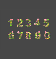 hand drawn floral numbers monograms or logo vector image