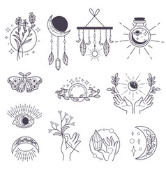 magic and occult signs potions and moon symbols vector image