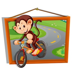 Monkey riding bicycle on the road vector image