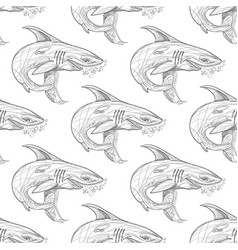 seamless pattern with the image of a shark for vector image