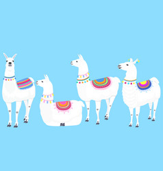 a set llamas cute guanaco vector image
