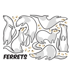 Cute cartoon ferrets set in outline vector