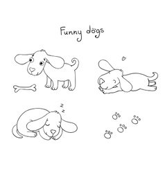 Funny cartoon dogs with a bone vector