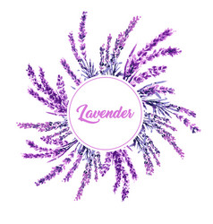 lavender flower wreath watercolor vector image