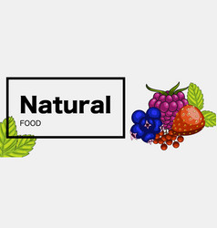 natural green food web banner vector image