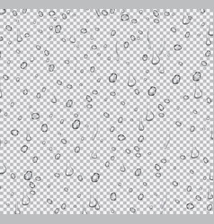 realistic water drops on transparent background vector image