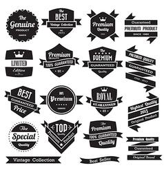 Set retro vintage badges and labels vector