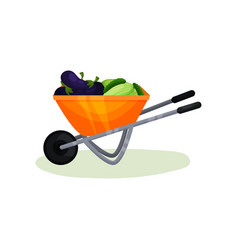 wheelbarrow full of fresh vegetables ripe vector image