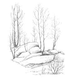 birch trees and rocks vector image