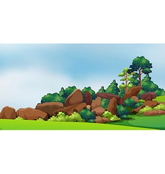 A forest with big rocks vector image