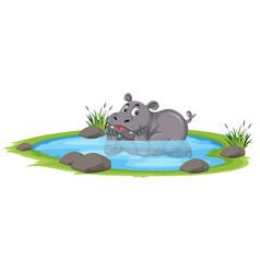 Cute rhinoceros in the pond vector