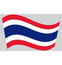 Flag of Thailand waving vector