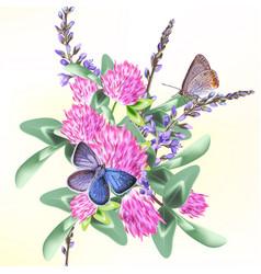 flower clover baground vector image