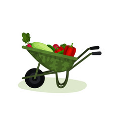garden wheelbarrow full of fresh vegetables vector image