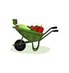 garden wheelbarrow full of fresh vegetables vector image
