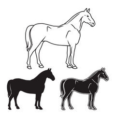 Hand drawn horse set vector