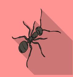 Hymenopteran insect is an antarthropod animal vector