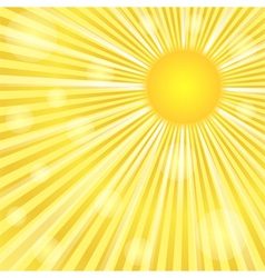 Sunburst vector image