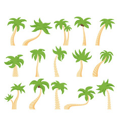 tropical palms green floral palm tree exotic vector image