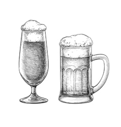 Beer glass and beer mug vector image