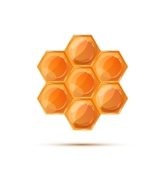 Bright glossy honeycomb with shadow on white vector