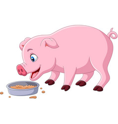 cartoon pig eating on white background vector image