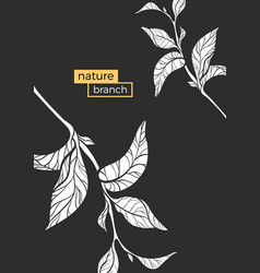 template nature branch 2 vector image