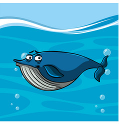 Whale swimming in blue sea vector