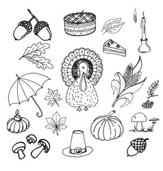 collection of elements for thanksgiving day vector image vector image