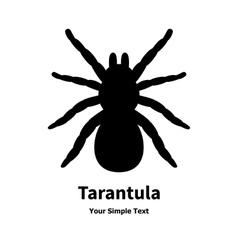 A black spider tarantula vector