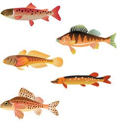 animal aqua aquarium vector image