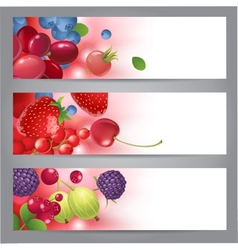 Banners with berries vector
