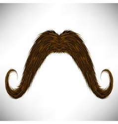 Brown Hairy Mustache vector