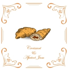 Croissant with Apricot Jam vector