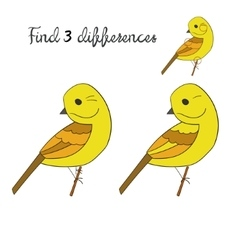 Find differences yellowhammer bird vector image vector image