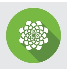 Flower icon Dahlia aster daisy chrysanthemum vector